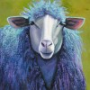 A Portrait of Ewe